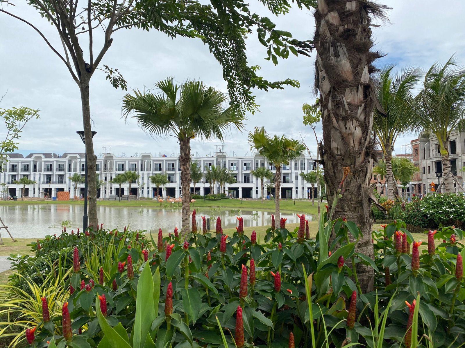 hình-thực-tế-dự-án-Phúc-An-Garden-Bình-Dương